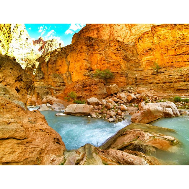 Havasu Creek. #grandcanyon #arizona