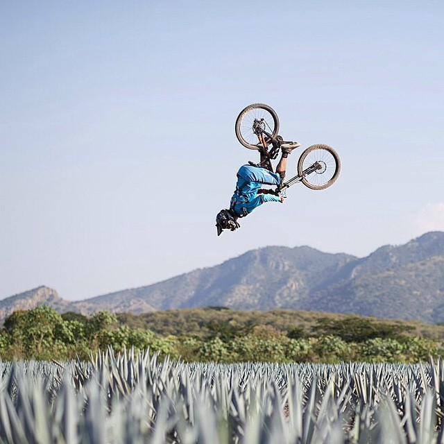 Always spot your landing. | @antoinebizet | #Tecate #Agave #Flip #MTB