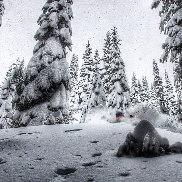 Flylow's @mersnow playing some hide and seek in the deep pow. #embracethestorm