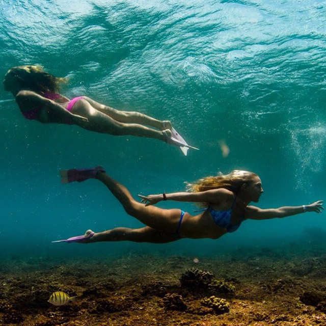 Mermaiding around with @amy_kotch and we found Nemo!  Photo by @hisarahlee in @odinasurf bikinis