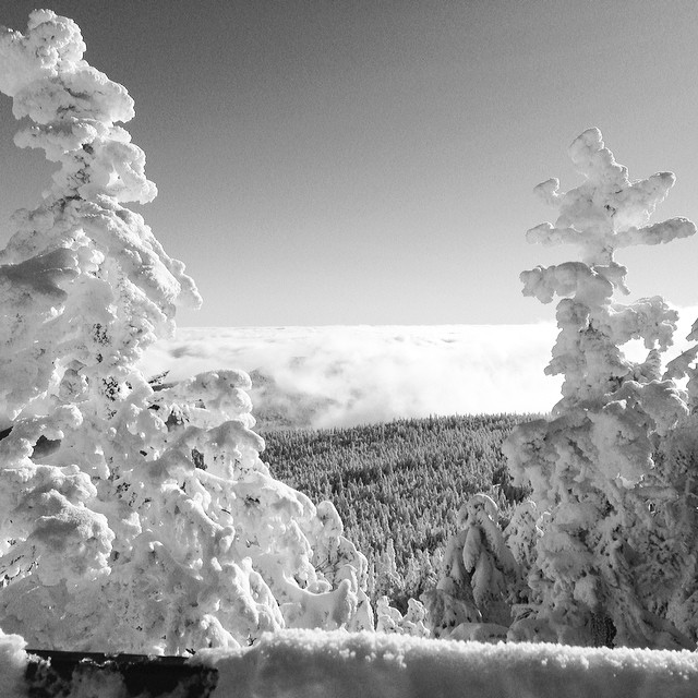Above the clouds at @killingtonparks today.