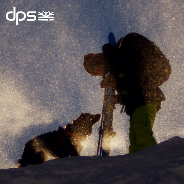 Get ready for Sun Dog - launching tomorrow, the third film in The Shadow Campaign produced by #dpscinematic in association with @outdoorresearch and @goretexna. #skiing #dog #powder