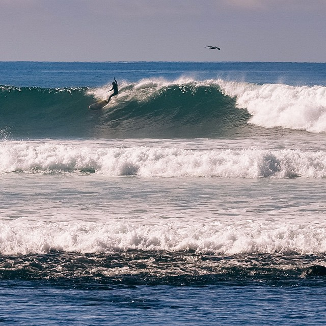 It was pure joy to share this wave with as many people as I could count with one hand ... somewhere in Baja during Thanksgiving weekend.
