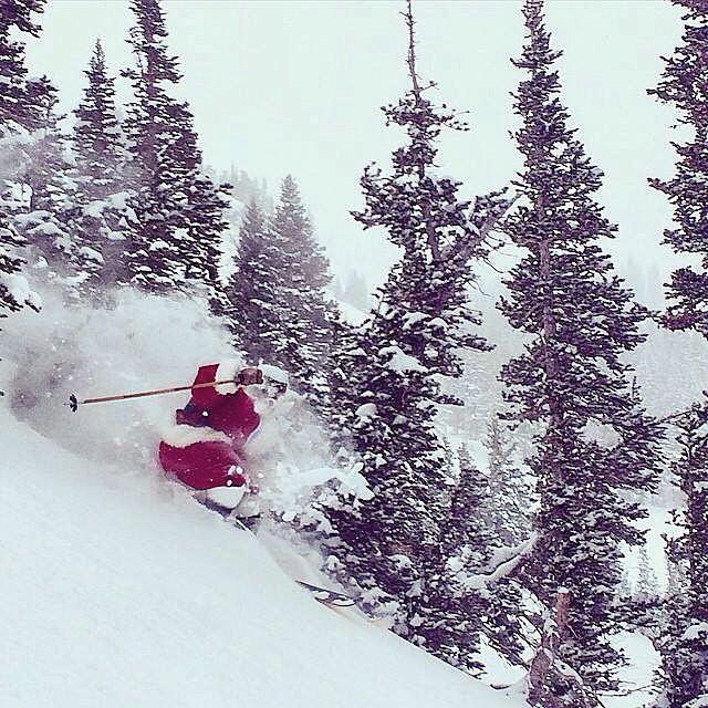 Even Santa takes pow breaks.  Today the sleigh stopped at @altaskiarea.  PC: @skierinblack Skier: #Santa // #plantyoursoul #qualityshafts