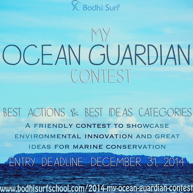 What is an Ocean Guardian? Over the next 10 days, we will be discussing what constitutes an #OceanGuardian in hopes that we can help inspire a few more people to get involved in this movement to help protect our oceans; as surfers, and as humans, we...