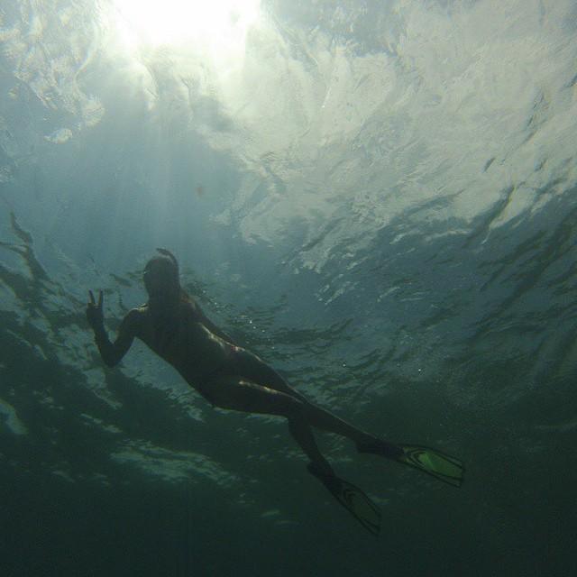 Mermaiding @artemis_eleven #miola #miolainthewild #miolainaction #muse #getoutthere