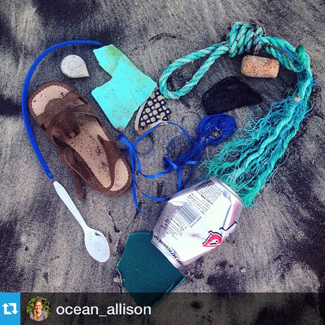 What does it mean to be an #OceanGuardian? Here is a #repost from our friend and fellow ocean-lover, @ocean_allison, to highlight her brilliant idea of the