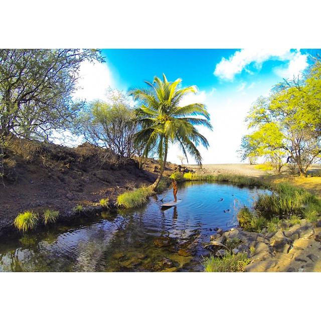 Just add water,  @swellliving @kaenon @odinasurf @konaboys @imaginesurf @navitasnaturals @wiseguides @livelifeinhifi @gopro @organik @artofboard @isurfiyoga @itakebioastin @rareform #love #PHpaddles #naturescarbonfiber #OluKai #oceanpaddlertv...