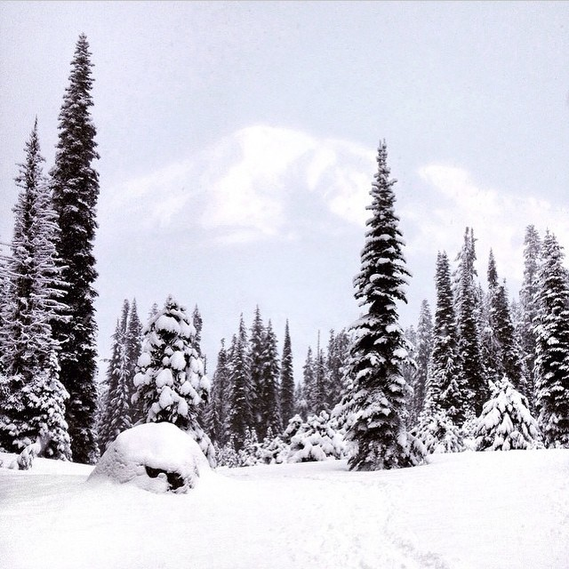 Happy Holidays everyone! Beautiful winter #radparks shot by @wanderwest of Mount Rainier.