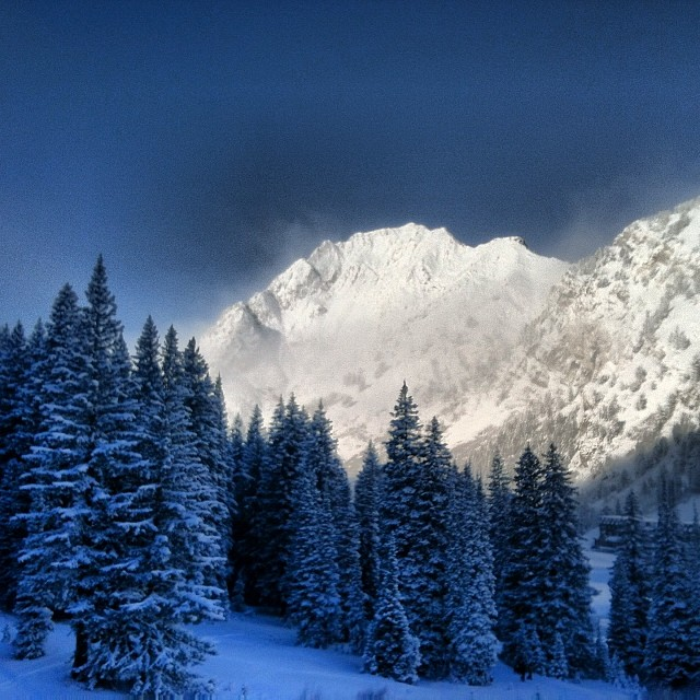 Good morning from the #Wasatch and @altaskiarea. #Powder days are back!