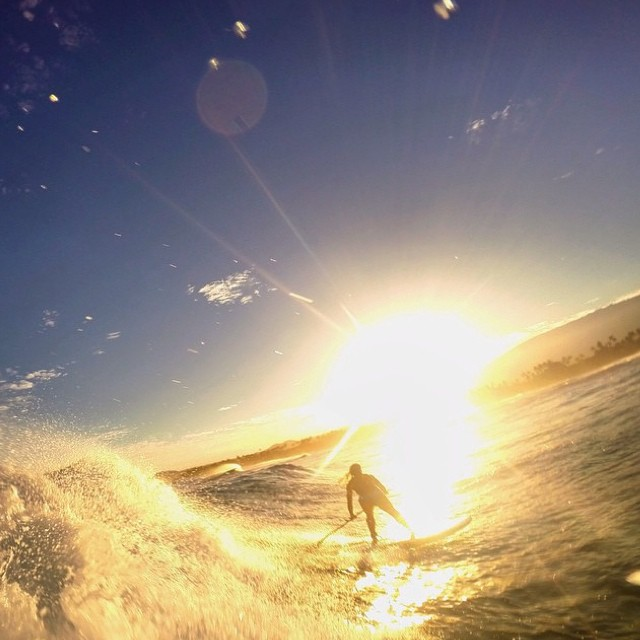 We had to share this post of @sehsa ripping in Maui this holiday season!