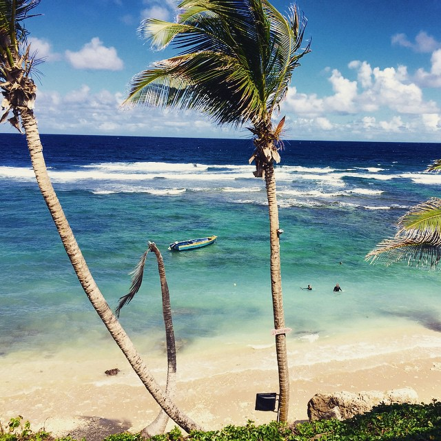 caribbean vibes #awesome #awesomesurfboards #caribbean