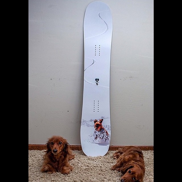 We just finished some custom decks for our friends @bluebirdwaxandsnowboards  the #powderhound graphic is all time @megelamoose and @chadotterstrom are a great combo. Hand made by snowboarders in the USA. #forridersbyriders #Jetson #futurefreerideseries