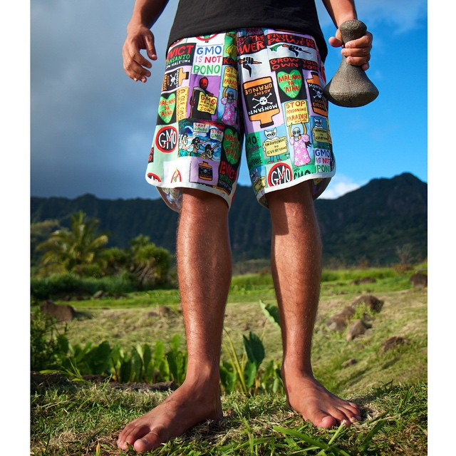 2014 sure was an amazing year! Here's our Protest Shorts: Evict Monsanto that we did in collaboration with @drewtoonz. It was just one of the many different boardshorts that we released this year and we are so stoked to show you guys what we have...