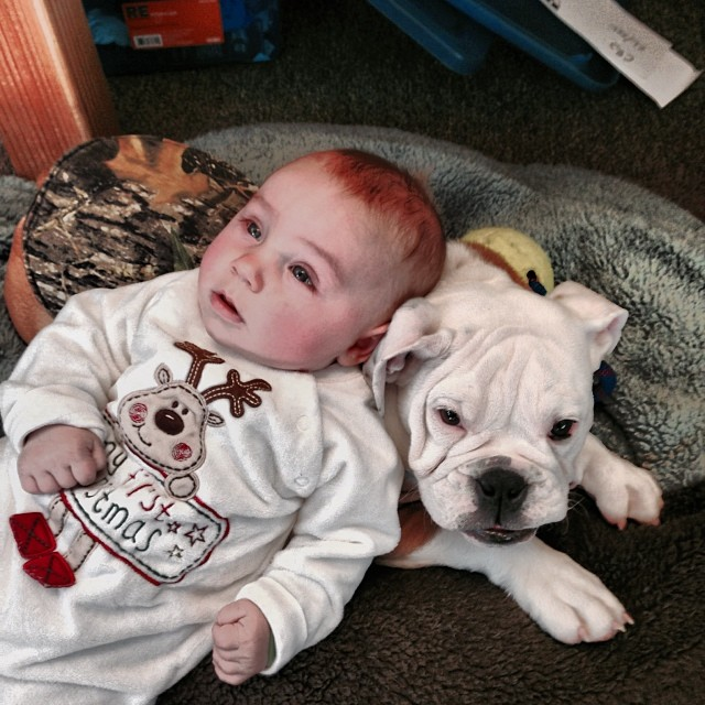 It was bring your #baby and #dog to work at the @crj_healingctr | #hotkarl and #babyCASSEN