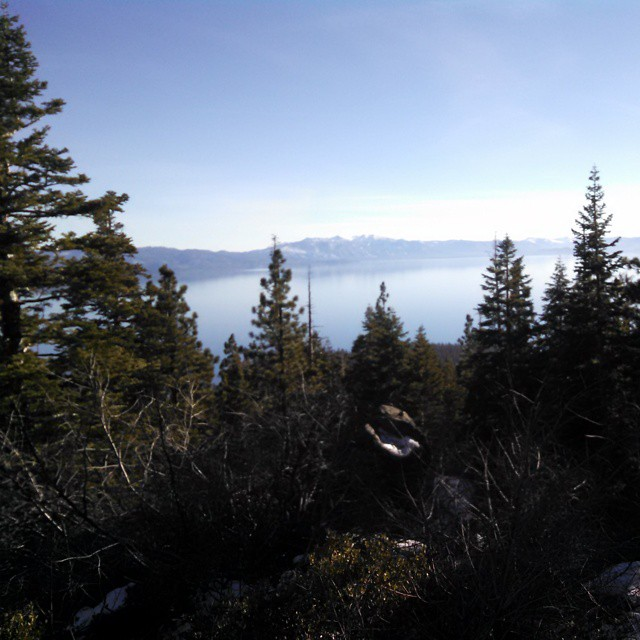 Looking like a sheet of glass #Tahoe #Pristine #WhyIsNoOneElseHere