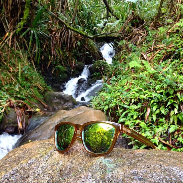 Sahara getting some sun in Kawaii • Order your Sahara shades today by clicking the link in our profile! They're polarized which is perfect for the beach! #LifesABeach #ThisIsMyBeach #Kameleonz #Kawaii #Hawaii #Travel #Beach #Waterfall #Sahara #GoPro...