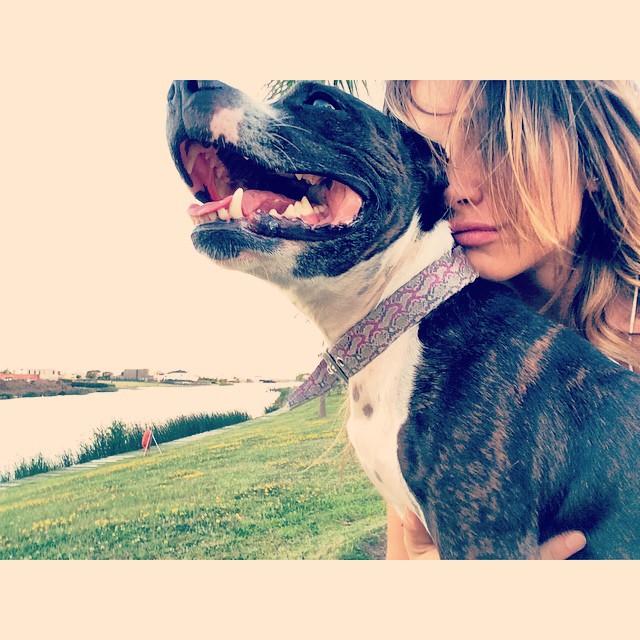 Mi chini #tikiti #suyay #love #loveofmylife #staffie #staffordshire #bull #terrier #nordelta