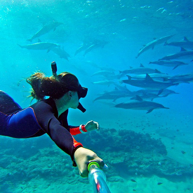 @snorkel_seasters snorkeling with a pod of dolphins. #gopro #gopole #gopoleevo #dolphins #hawaii