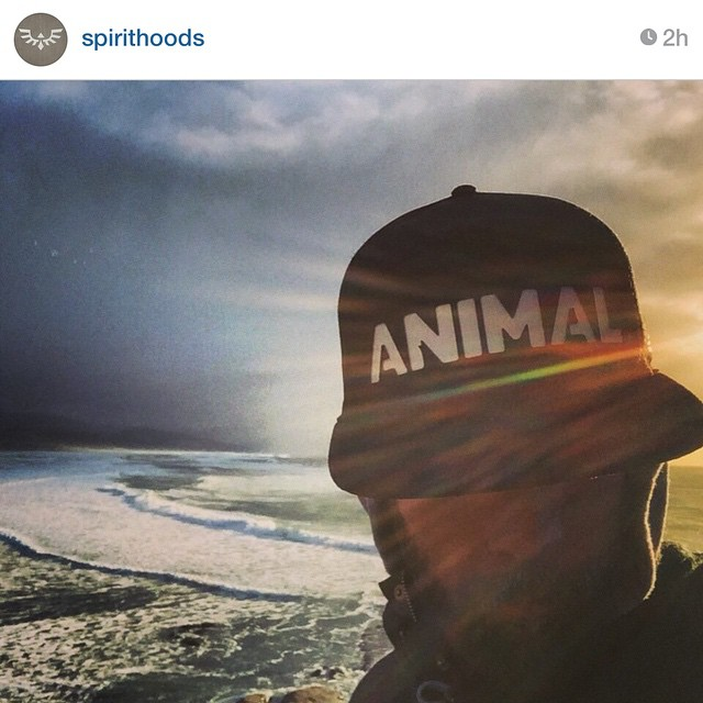 Repost from @spirithoods - Get an animal #snapback on spirithoods.com