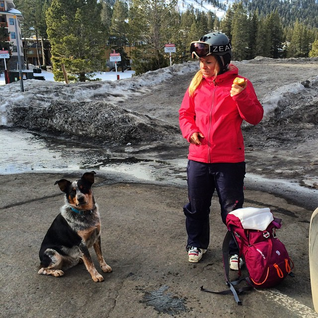 #saywhat ! Huckleberry and @hazelbirnbaum hanging @kirkwoodmtn having a blast ! Stoked to hang with this amazing lady before she heads out to compete on the Freeride World Tour. This lady is going to crush! #lifeisgood #dogsareyourbestfriend #shredzone...