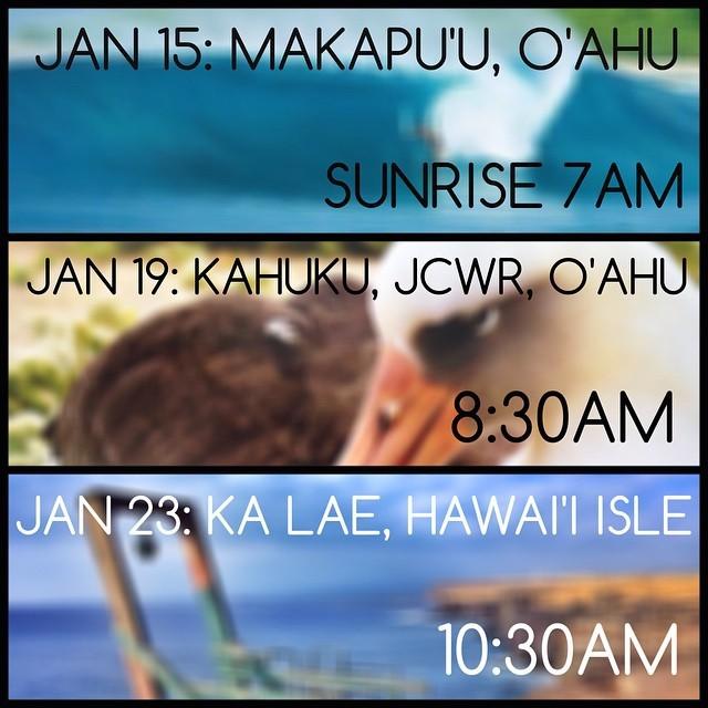 Stoked to get involved in some great cleanups in Hawaii // Makapu'u @sustainablecoastlineshawaii @808cleanups @surfrideroahu // Kahuku @kokuahawaiifoundation @methodhome @sustainablecoastlineshawaii // Ka Lae @konabrewingco @wildhawaii...