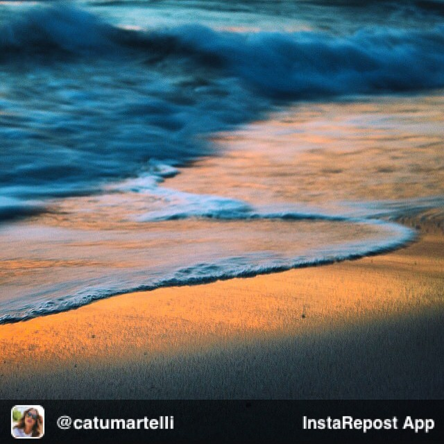 Repost from @catumartelli via @igrepost_app, it's free! Use the @igrepost_app to save, repost Instagram pics and videos, My happy place