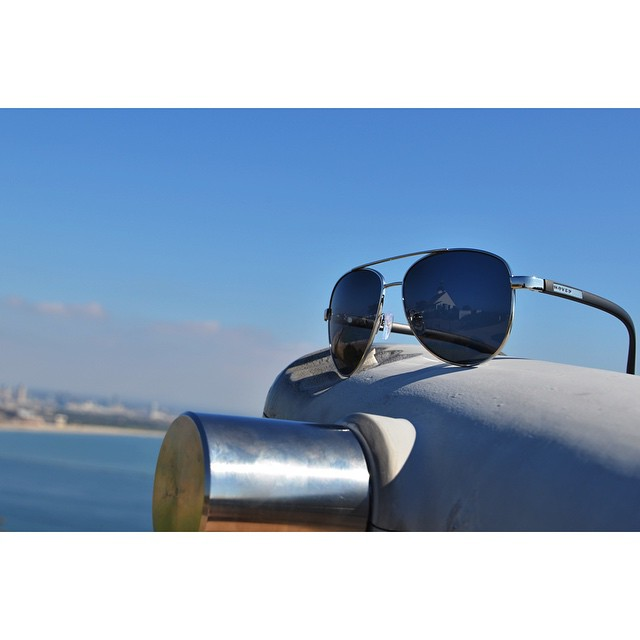 || Dewey on the Lookout || #hovenvision #neversettle #ocean #cabrillonationalmonument #sandiego