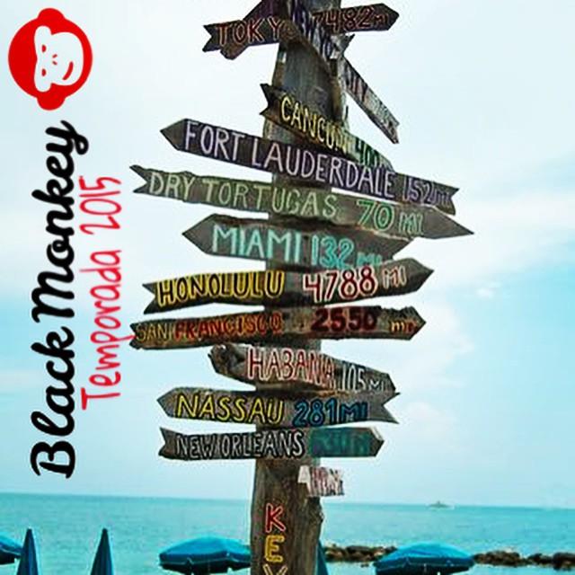 Mitad de semana! Ya decidiste adonde ir este fin de semana? Cálzate las @blackmonkeystore y viaja!!! #blackmonkey #alpargatas #viajar #summer #verano2015 #calzado #onda #aroundtheworld #pde #quito #pinamar #carilo #cdelu #travel