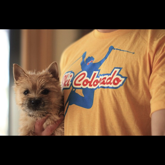 Instagram Giveaway (shirt, not puppy)! Just tag any friends that would like this shirt to be entered to win one.  You can purchase these 100% US made, vintage inspired Ski Colorado tees at www.kinddesign.co ------ #kinddesign #vintagetee #ski...