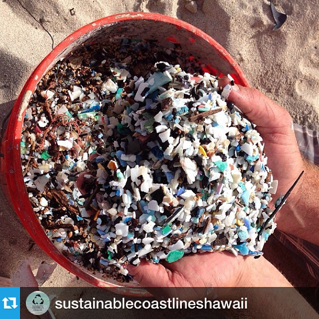 We will be cleaning with @sustainablecoastlineshawaii and  @kokuahawaiifoundation tomorrow morning at the #JamesCampbellWildlifeRefuge #JCWR. Please join us and help us remove #microplastic like this and other plastics. We are gonna do our best to...