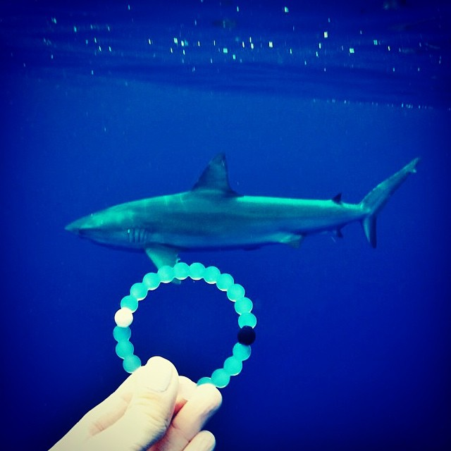Sneak attack! #livelokai Thanks @mermaidlove808