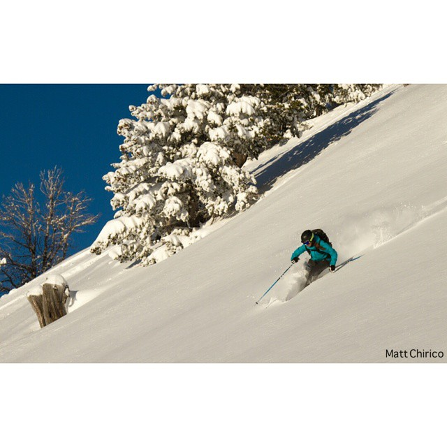 My wandering mind can be such a hindrance to my studies... but.... bluebird powder days..... Photo credit: @mattchirico #stopONEwasatch #grizzlygulch #dawnpatrol #wasatchbackcountry #powfordays #westminsteroutdoors #alpinebabes #outdoorwomen #spreadstoke