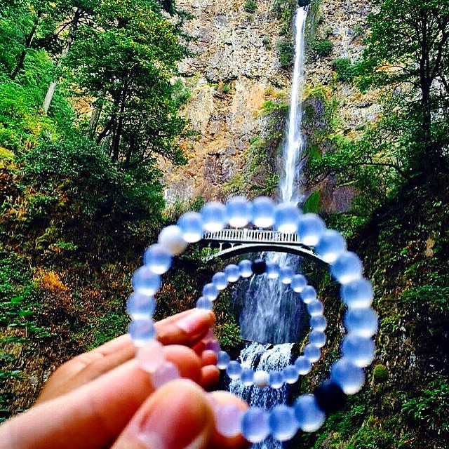 Refocusing on nature #lokailens #livelokai  Thanks @nelsonadams