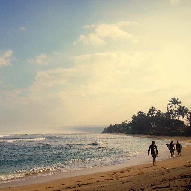 Morning rituals in Hawaii. #getOutside #alohabureo