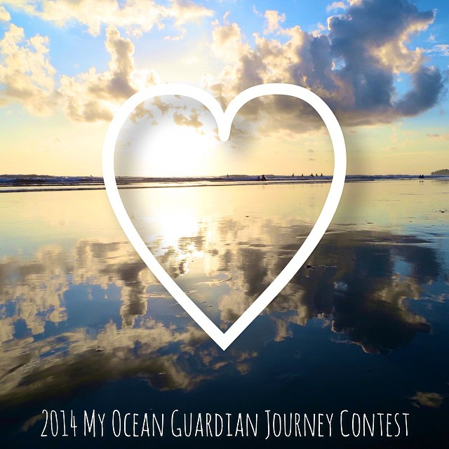 We are SO VERY EXCITED to announce the winners of this year's My Ocean Guardian Journey Contest. The competition was steep in the Actions Category, and nonexistent in the Ideas Category — with no submissions this year. Over the next few months, you...