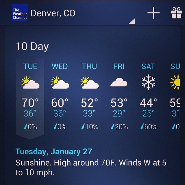 Go home, Denver, you're drunk.  #SIA #SIASnowShow #Denver #winter #grassracks #bamboo