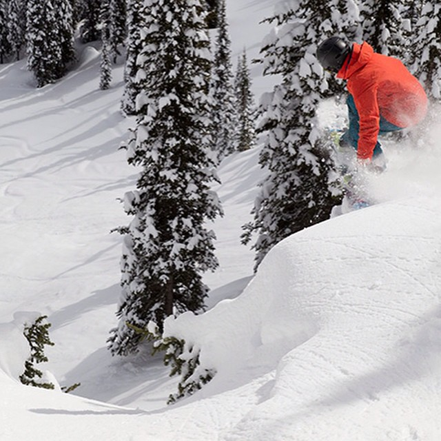"""PAUSE 4 PREVENTION // Snow Fitness According to the American Cancer Society, """"one-third of the 550,000 cancer deaths that occur in the US each year are due to an unhealthy diet and insufficient physical activity."""" Yikes!  Thanks to this @burtongirls..."""