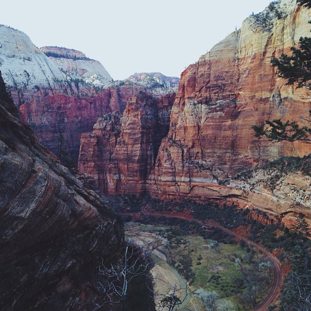 A rainbow of color in Zion National Park shared by @Yo_hannah! #radparks #parksproject