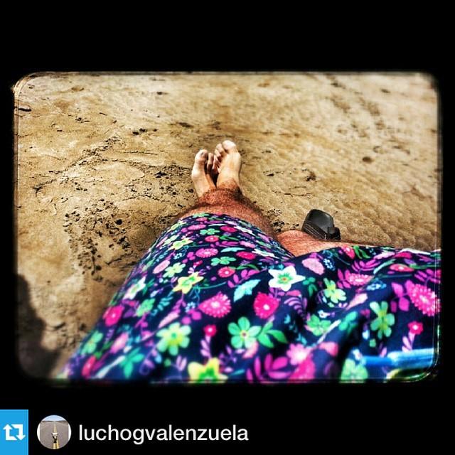 Un amigo de la casa #Repost @luchogvalenzuela with @repostapp.・・・Parador Mute Mdq con mi @somosborna Luxemburgo. #playa #borna #mdq