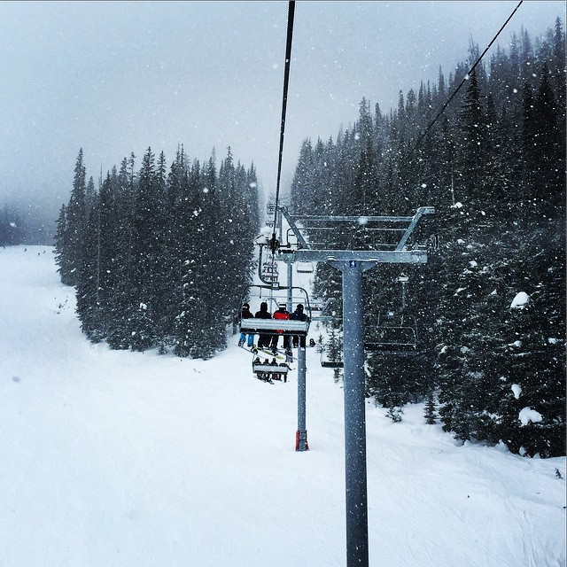 It snowed #boom #Vail #VailLive #Snowboarding #pow #snow #winter #posse