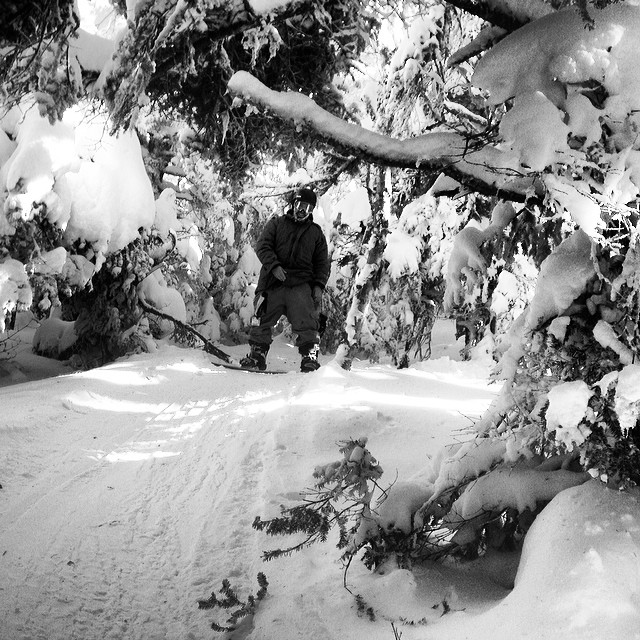 Another fun day of pow and trees at @strattonresort #trees #pow #strattonmountain #snowboarding #glades