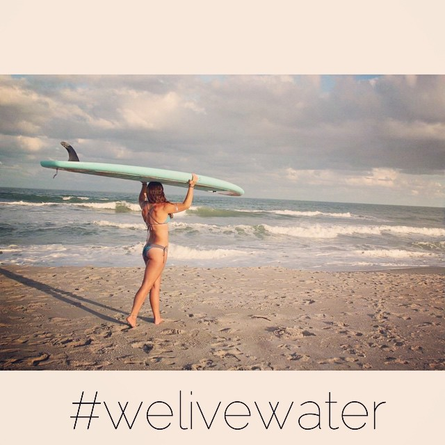 ✈This Bird is Heading South for the rest of the winter! Going to be assisting my #teamboardworks @waveofwellness Surf/Sup/Yoga retreat in Punta Mita, Mexico! ✈️Then off to Oahu with (@waveofwellness & @calirainbow) @localhoneydesigns team to help with...