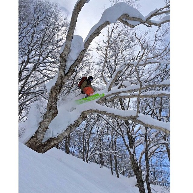Flylow's @racheldelacour playing in the trees of Japow.
