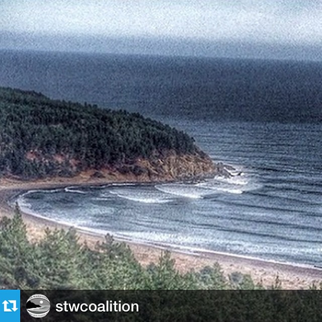 Our friends @stwcoalition and the local communities in Chile need your signatures to save an iconic wave. A new development threatens public access to the coast, a right guaranteed to all citizens under Chilean law. Locals have mobilized under...