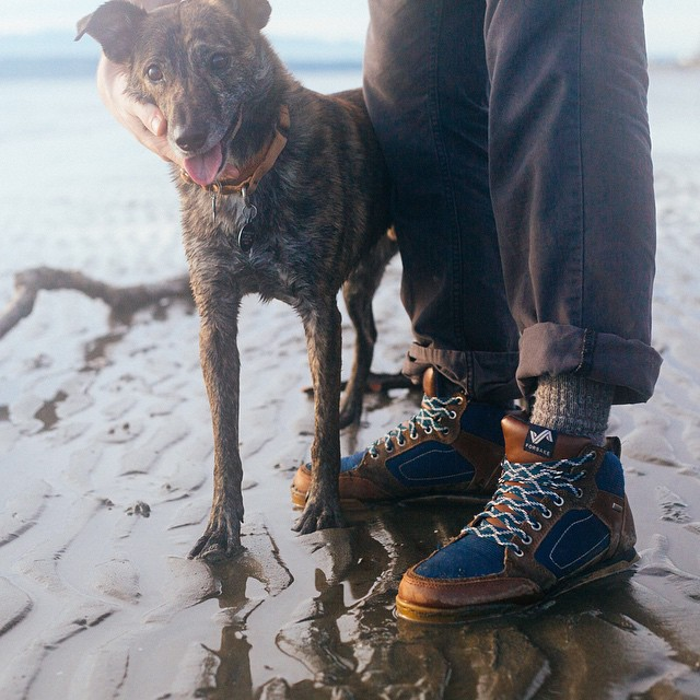 @livemorecreative sporting his Clydes for a walk on the beach. #waterproof #getoutthere