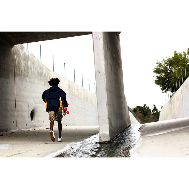 sea-ment jungle #jellyskateboards #jellylife #laderaranch #surfskate || Rider: @zeyakemon Photo: @killamitchyviewz