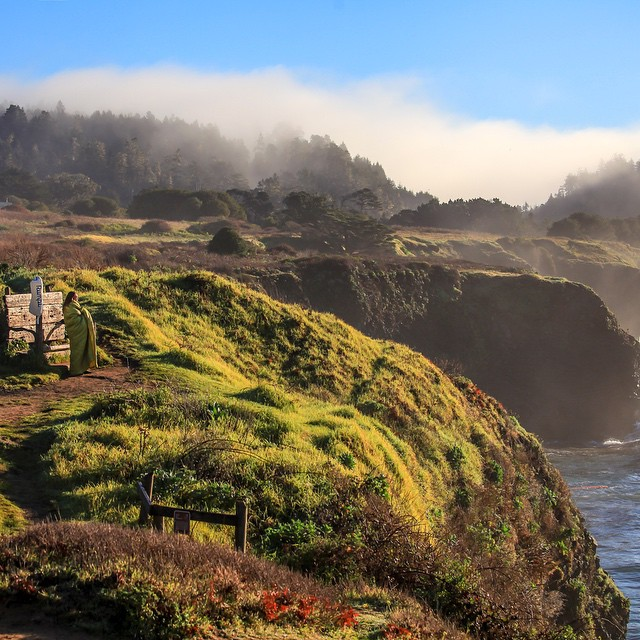 Can you spot @jszendrei? She's camouflaged and warm in her fern Rumpl on a steamy coastal perch in Northern California (