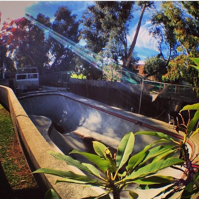 RegrAm @pocketpistols #unreal #skateboarding #backyardpool #concretedreams