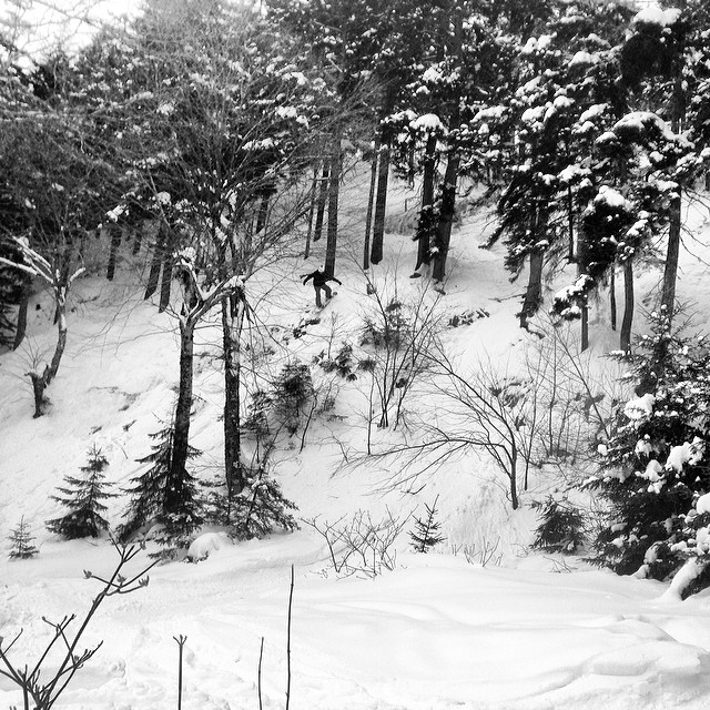 Tons of pow, drops and hidden shacks in the woods today at @sundayriver #pow #sundayriver #glades